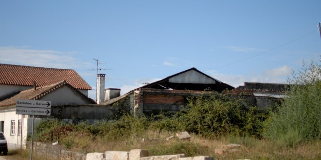 Habitantes da zona do cruzamento de Gavinhos preocupados com falta de limpeza de terreno junto a habitações